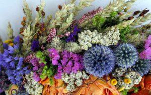 Džiovinti gėlių žiedai