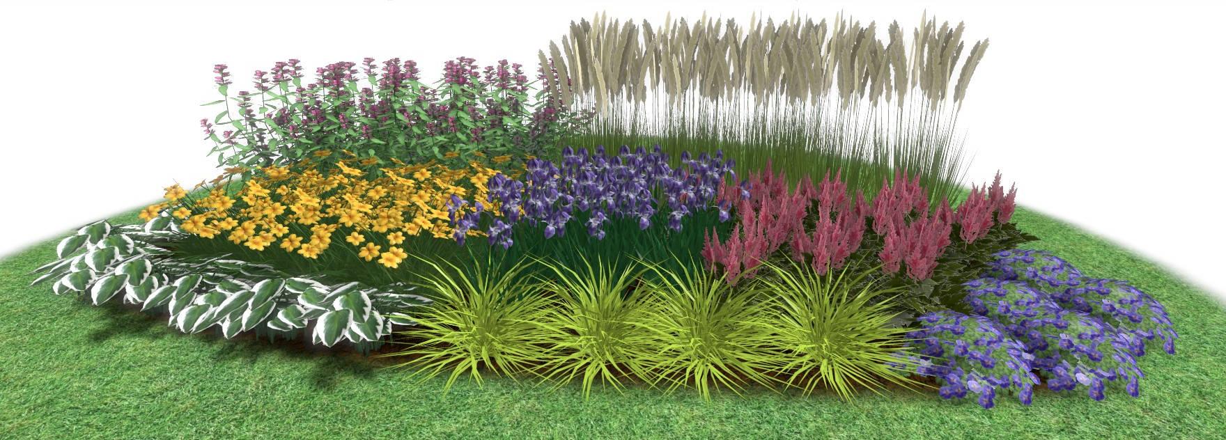 Augalų derinimo pavyzdys