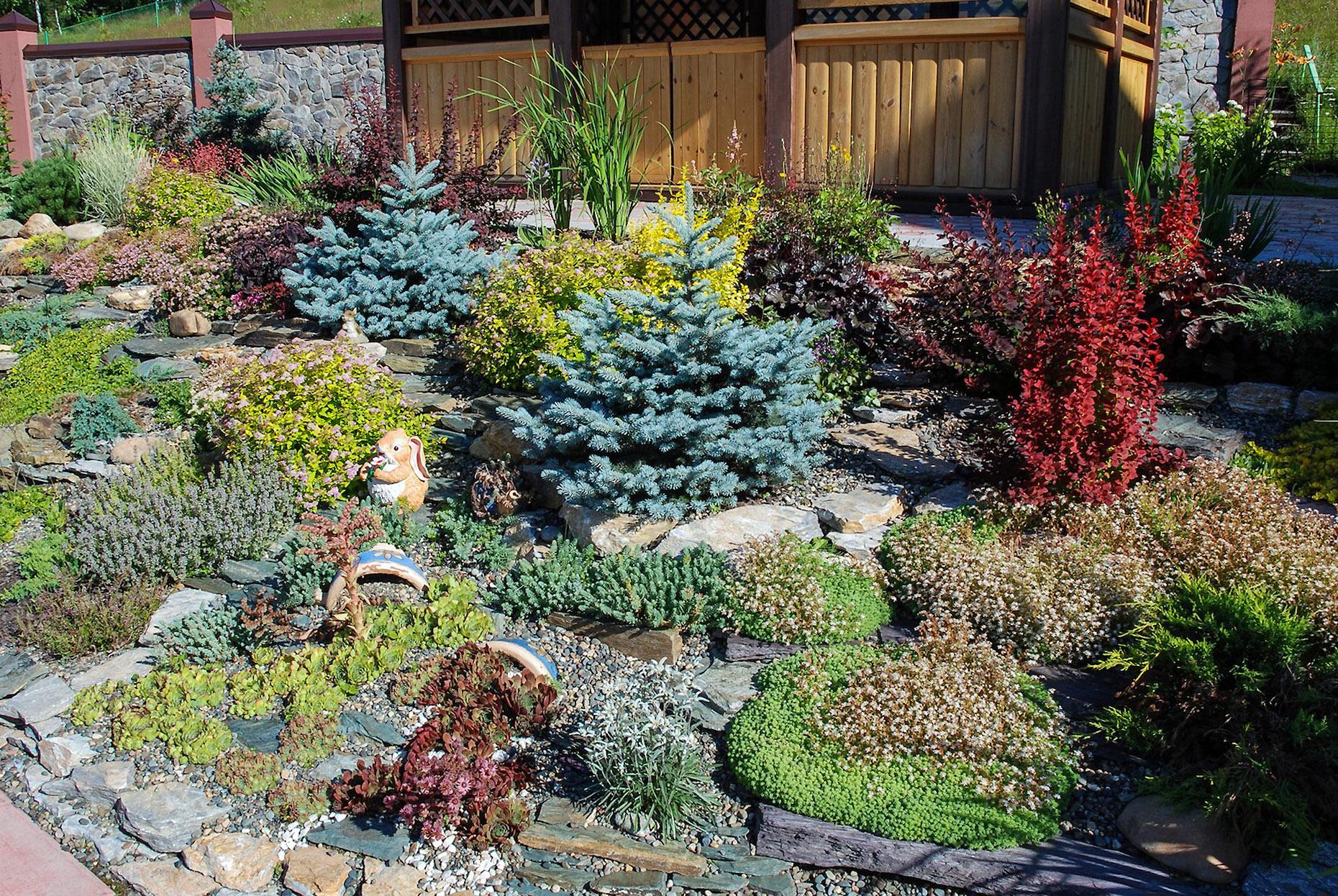 Kiliminių augalų gėlynas