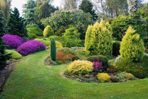 Augalų grupavimas sodinant