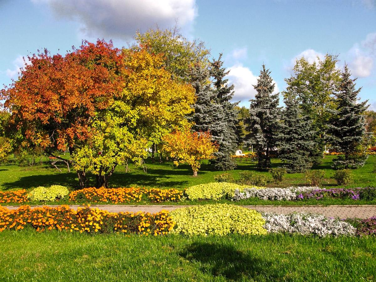 Gėlynai žydintys rudenį