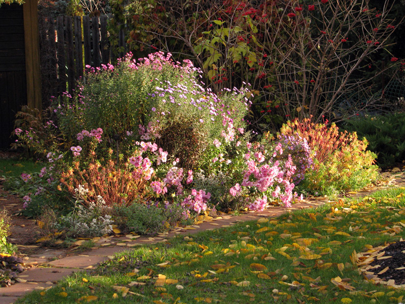 Rudenį žydintys sodai